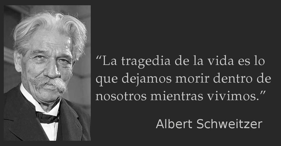 Albert Schweitzer 3